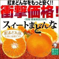 スイートまどんな(訳あり)2kg【送料無料】 愛媛県産 家庭用 ゼリー食感 紅まどんなと同品種 フルーツ 果物 くだもの わけあり マドンナ みかん 柑橘類 ミカン