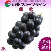 藤稔は、親をピオーネとした大粒ぼ葡萄で、高い糖度と適度な酸味、十分な果汁が特徴です。また、種無しで皮...