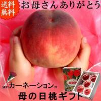 初夏の希少な贈答桃。山梨のかわいい桃っ子達を、母の日の大切な贈り物に是非どうぞ。カーネーション(造花...