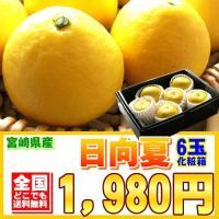 宮崎県の特産品は、果物では完熟マンゴーや完熟きんかんなどございますが、実はこの日向夏(ひゅうがなつ)...