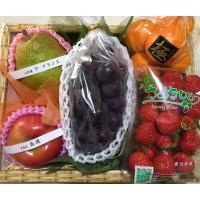 店主ゴリが厳選した旬の果物をお届けいたします。 内容物見本:さくらんぼ、メロン、デコポン、びわ、ブル...