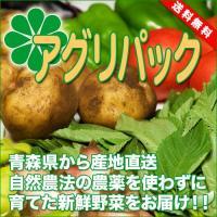 [送料無料]アグリパック(青森 アグリメイト南郷)無農薬野菜セット 自然農法野菜詰め合わせパック