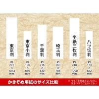 ■ かきぞめ用紙 東京小判(約190×680mm) ■ かきぞめ用に最適です ■ 20枚入り ※ 通...