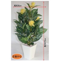 CT触媒 ゼブラツリー sz-012 フェイクフラワー(造花)日本製