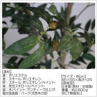 CT触媒 オリーブツリー sz-039 フェイクフラワー(造花)日本製