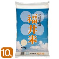 米 10kg 30年産 セール 福井米 福井県産 白米 送料無料 お米
