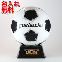 結婚祝い品に☆思い出の寄せ書きを書いてたった1つだけのサッカーボールを!  オリジナル名入れシールレ...