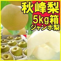 ■ジャンボサイズで大きいサイズになると1kg超にもなる品種、秋峰梨です。 ◆梨:新高(福島市・萱場産...