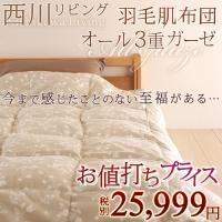 ◆商品名:肌掛け布団 シングル 掛け布団 夏 西川 ◆商品お問合せ番号:8076 ◆メーカー名:西川...