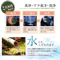 有機栽培 グァバ茶 2g×40包 国産(鹿児島産) 残留農薬・放射能検査済|gabainouen|04