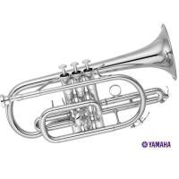 YCR-4330GSIIは、吹きやすさに加えゴールドブラスベル採用による、幅のある豊かな音色が魅力の...