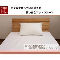 【サイズ】 300×300cm 【生地】  綿100% 【生産】  日本製  ※商品画像の色と現物商...
