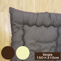 テイジン 肌掛け布団 シングル(150×210cm) 抗菌防臭 中わた量 約0.4kg 肌かけ布団