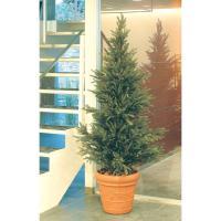 人工植物 造花/モミツリー 1.8m /GD-153S/フェイクグリーン/ディスプレイ/飾り