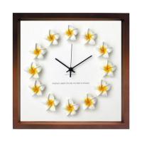 ハワイアン プルメリア 文字盤 掛け時計 FrangiPani Clock1 プルメリア イエロー ブラウン FP-1004 kar-4534129s4