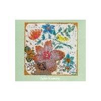 種別:CD フジ子・ヘミング 解説:『永久への響き』に続くアルバム。リストン「ラ・カンパネラ」他を収...