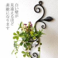 素朴なアイアンの鉄色が かえってとても暖かい雰囲気の壁掛け花瓶です  小さなガラスカップには フラワ...