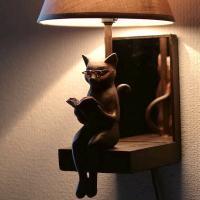 壁に取り付けるタイプのランプです 一身に読書するネコさん バックにミラーが付いていて ネコさんの後ろ...