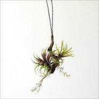 苔生した枝に多肉植物が付いた フェイクな吊り下げ用の飾りです  光や温度、水やり等 本物は、なかなか...