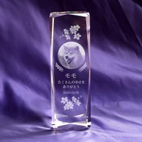 写真彫刻代込み 天使の羽メモリアル スマート150mm ペット位牌 クリスタルガラス
