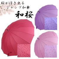 雨に濡れると桜が浮き出る♪ジャンプ傘 和桜55cm雨に濡れるとあら?!不思議♪桜模様が現れます!!大...