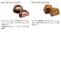 ゴールド ディスカバリー コレクション 6粒|godiva|03