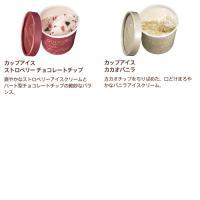 アイスギフトセット カップアイス&トリュフ 7個|godiva|04