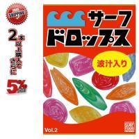 サーフィン DVD サーフドロップス Vol.2 サーフフードの新シリーズ SURF DVD