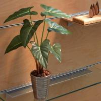 光触媒 観葉植物 造花 人工植物 グリーン /フィロデンドロン 243A5036