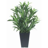 観葉植物 造花 光触媒 人工植物 ポット・グリーン /スパイダー 50cm