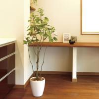 フィカス・ブランチツリー 130cm /造花の観葉植物 光触媒(空気浄化) インテリア・グリーン鉢植え /723A180-3417