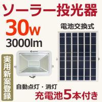 品番:TY004(GOODGOODS正規品) 充電:ソーラー充電 点灯:光センサー&スイッチ...
