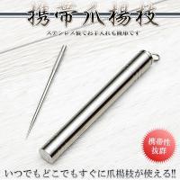 ステンレス 鋼 爪楊枝 ピック つまようじ 専用ケース 携帯 旅行 コンパクト