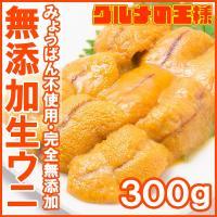【送料無料】うに<冷凍生うに100g×3パック>  うに丼ならたっぷり約6杯分  【うに ウニ うに...