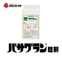 バサグラン粒剤 3kg 水田用除草剤 農薬 住友化学