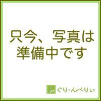 シャクナゲ 苗木 あけぼの 18cmスリット苗 しゃくなげ 苗 石楠花|green-very|02
