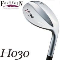 Fourteen H-030 H030 WEDGE フォーティーン ウエッジ N.S.PRO 950...