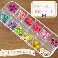 ■商品内容 サイズ:約5〜12mm程度 カラー:12色 ※天然のお花を染めているため、染まり方に個体...