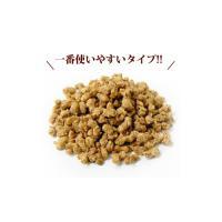 大豆ミート そぼろミンチ 1kg 送料無料|greens-gc|02