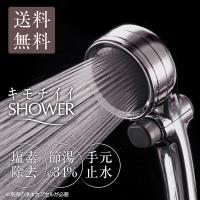 シャワーヘッド 節水 塩素除去 手元止水 浄水シャワー メタリックキモチイイシャワピタWT JSB022M takagi タカギ 安心の2年間保証