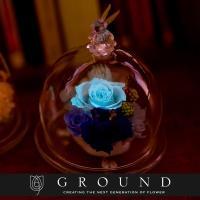 【ご注文件数4万件突破!】 暗闇で青く輝くバラでサプライズプレゼント 大切な人が笑顔で驚く、贈り物 ...