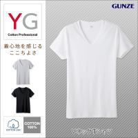 グンゼ YG Vネック Tシャツ 半袖 2014年デビューした新YGブランドの定番シリーズのV首Tシ...