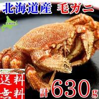 毛ガニの本場、北海道で水揚げされた約630gある大型極上毛蟹!もちろん、船上凍結品のため鮮度抜群!身...