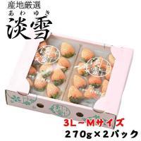淡雪 あわゆき 白いちご 熊本県産  青秀 3L〜Lサイズ 約270g×2パック  送料無料 お歳暮 ギフト 贈り物 ギフト