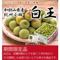 本場、紀州和歌山の高品質な「紀州小梅」(白王)をお届けします。  紀州小梅(白王)は他の産地の小梅と...