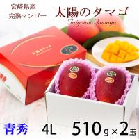 宮崎県産の完熟マンゴーは、アーウィン種で通称アップルマンゴーとも呼ばれ、日本での栽培の96%を占める...