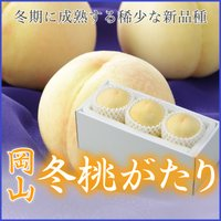 岡山冬ももがたりは冬に収穫する全国でも珍しい桃で、2013年に出荷が始まったばかりの新品種です。出荷...