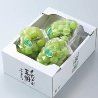 瀬戸ジャイアンツは20年余りの歳月をかけて生み出された岡山の新しい葡萄です。皮が薄くて柔らかく、種も...