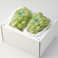 瀬戸ジャイアンツは20年余りの歳月をかけて生み出された岡山の新しい葡萄です。皮が薄くて柔らかく、種な...