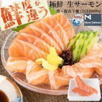 送料無料 サーモン 鮭 アトランティックサーモン 生 刺身用 背・腹セット 約600g 切るだけ とろける脂 鮭 ノルウェー サーモン 刺身